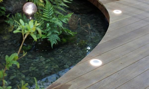 池とデッキ