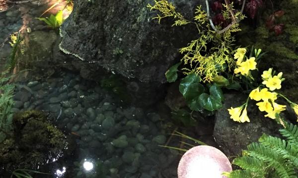 池のディテール
