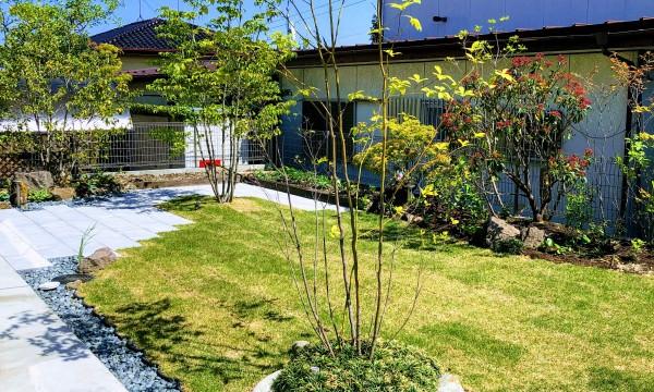 芝生を中心に、お施主様のお好みの樹木(ヤマボウシ、キンモクセイ、クロモジ)を配置し、菜園も作りました。