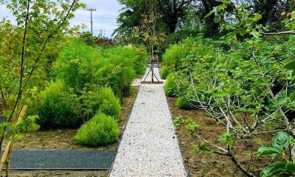「オーチャード」前から植えられていた果樹や、敷地内にあった果樹・花木などを移植し、散策や収穫などできる様に小道を配列しました。