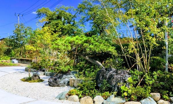 「もてなしの庭」彩りの庭と背中合わせになり、こちらはより和風なスタイル。石、松、モミジを中心とした庭。