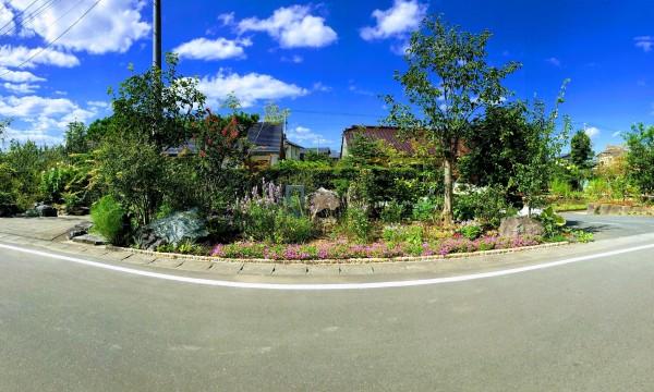 「彩りの庭」 既存の庭から石を移設し山をつくり、既存樹に合わせ、一年中花や実を楽しめる花木と草花を加えました。
